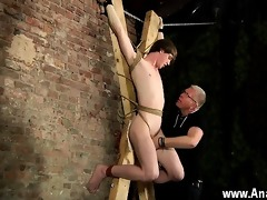 homosexual orgy another sensitive cock