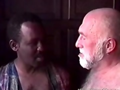 daddy bear drilled by hot black guy