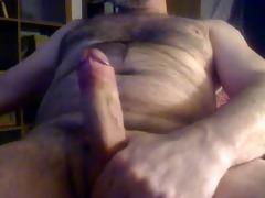 large daddy bear