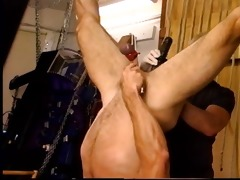 jim roberts suspended upside down stuffed with a
